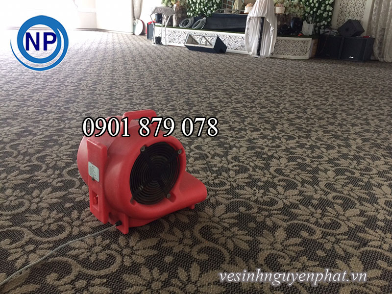 Công ty cung cấp dịch vụ giặt thảm văn phòng TP HCM